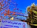 Le Centre National de Greffe de la Moelle Osseuse de Tunis photo2 المركز الوطني لزرع النخاع العظمي بتونس.jpg