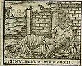 Le cose maravigliose dell'alma citta di Roma - anfiteatro del mondo (1600) (14584384910).jpg