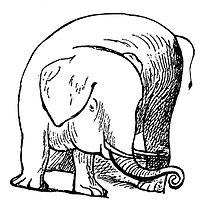 Lear - Elephant.jpg