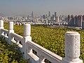 Lianhuashan Park Shenzen China 1310762.jpg