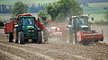 Lifting potatoes near Bonby, 2011.jpg