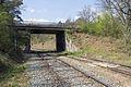 Ligne de Bourron-Marlotte à Malesherbes - 2013-04-21 - IMG 9433.jpg