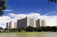 Linkou Chang Gung Memorial Hospital 20100401.jpg