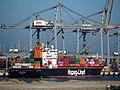 Lisbon Express (ship, 1995) IMO 9108128 Princes Amaliahaven pic2.JPG