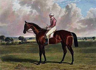 Little Wonder (horse) - Little Wonder