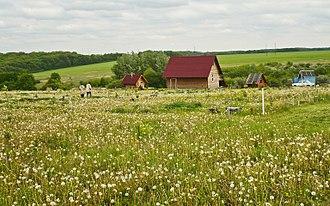 Ringing Cedars' Anastasianism - Buildings in the Korenskye kinship estate in the Shebekinsky District of Belgorod Oblast.