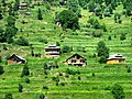 Local houses at Neelum Valley.jpg