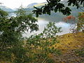 Loch Linnhe. - geograph.org.uk - 238979.jpg