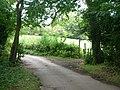 Logmore Lane - geograph.org.uk - 59575.jpg