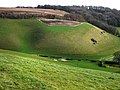 Looking east from Park Hill, East Meon - geograph.org.uk - 717099.jpg
