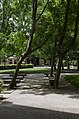 Louisiana State University, Baton Rouge, Louisana - panoramio (71).jpg
