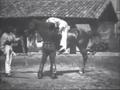 Lumières La Voltige 1895.png