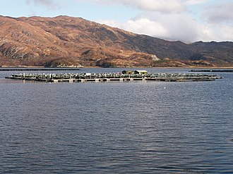 Mariculture - Fish cages containing salmon in Loch Ailort, Scotland.