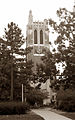 MSU Beaumont Tower sepia.jpg