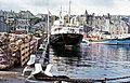 MV Earl of Zetland.jpg