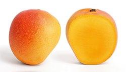Mango and cross section edit.jpg