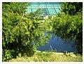 March Spring Bambus Botanischer Garten Freiburg - Master Seasons Rhine Valley Photography - panoramio (1).jpg