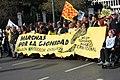 Marchas por la diginidad 2014 madrid 0001.jpg