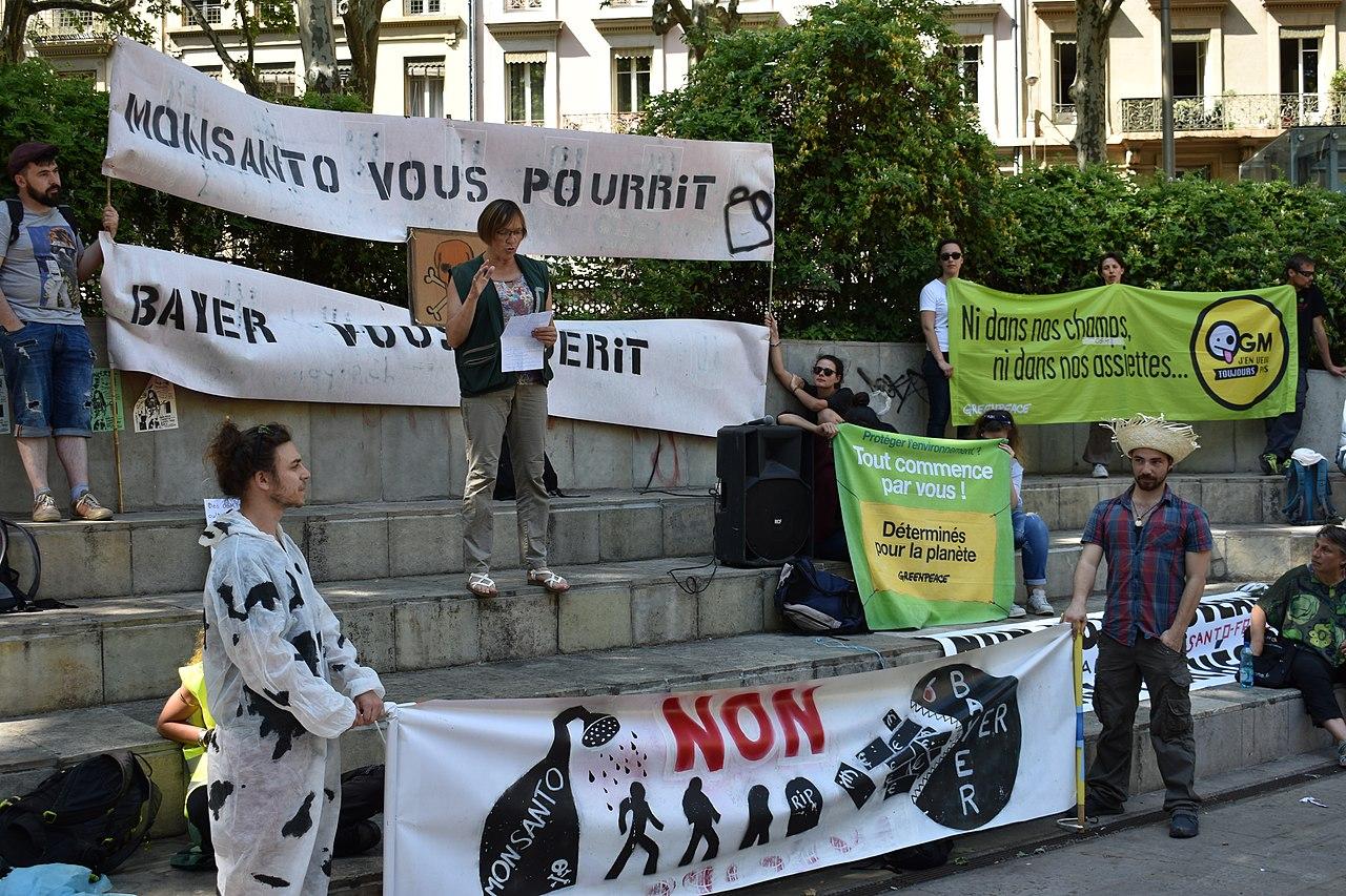Marche contre Monsanto – Lyon 2018 – Discours place Guichard – 5 – Greenpeace (2).JPG