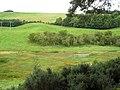 Marshland,Linglie Farm - geograph.org.uk - 1474897.jpg