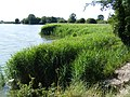 Marsworth Reservoir - geograph.org.uk - 1400390.jpg