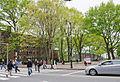 Massachusetts Institute of Technology (7200952042).jpg
