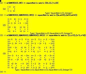 Axiom (computer algebra system) - Image: Matrixinmatrix