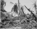 Men of the 7th Division using flame throwers to smoke out Japanese from a block house on Kwajalein Island, while... - NARA - 531319.tif