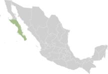 Јужна Доња Калифорнија