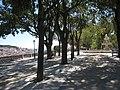 Miradouro de São Pedro de Alcantara (3901816850).jpg