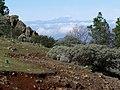 Mirando al Teide - panoramio (1).jpg