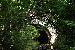 A water-level photograph of the Samson Occom Bridge, largely obscured by trees.