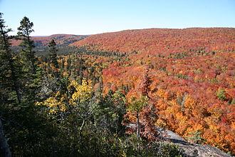 Moose Mountain (Minnesota) - Fall colors from top of Moose Mountain