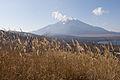 Mt.Fuji from Mt.Teppoginoatama 19.jpg