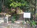 Mt.Sagiyama 101.JPG