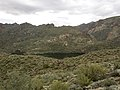 Mt. Pinter Base Loop, Tonto National Forest, Butcher Jones Trail, Fort McDowell, AZ 85264, USA - panoramio (109).jpg
