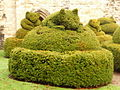 Much Wenlock, topiary at Wenlock Priory - geograph.org.uk - 1627208.jpg