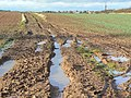 Muddy progress - geograph.org.uk - 1167891.jpg