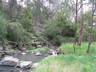 Mullum Mullum Creek - A section of the Mullum Mullum Gorge near Yarran Dheran.