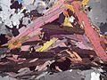 Muscovite and Biotite2b.jpg