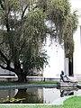 Museo de Bellas Artes (4).jpg