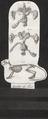 Myoxus nitela - ingewanden en skelet - 1700-1880 - Print - Iconographia Zoologica - Special Collections University of Amsterdam - UBA01 IZ20400185.tif