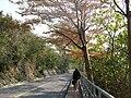 NSYSU campus day05.JPG