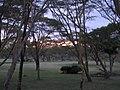 Naivasha Sopa lodge (7513172900).jpg
