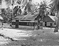Native hospital on Rongerik Island, summer 1947 (DONALDSON 121).jpeg