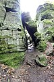 Naturpark Südeifel (Eifel); Teufelsschlucht 22.jpg