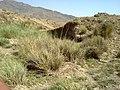 Navidhand Valley, Khyber Pakhtunkhwa , Pakistan - panoramio (50).jpg