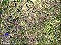 Nebraska-sand-hills.jpg