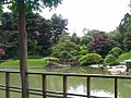 New York Botanical Garden 23.jpg