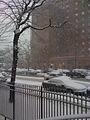 New York City - East 20th Street near Avenue C - Stuyvesant Town 26JAN2011.jpg